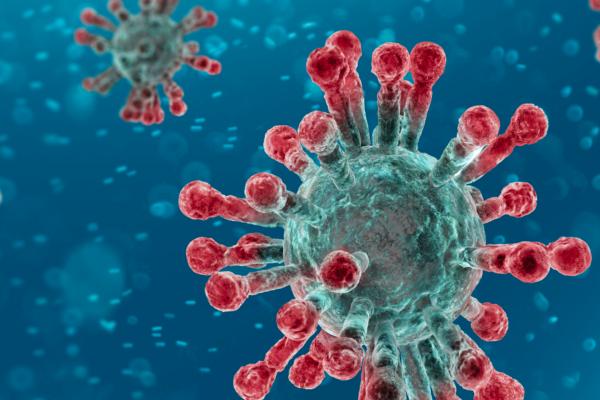 Coronavirus Information Hub